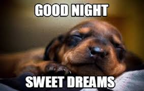 Good Nite Memes - cut your tiredness before going to sleep with good night memes