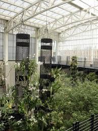 Uc Berkeley Botanical Gardens Garden Berkeley Botanical Garden Inspirational Laep Symposium The