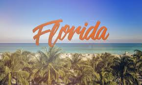 quotes about fall in florida student group trips and group travel planners green light tours