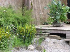 komposter fã r balkon kubi ein ganzer garten auf 1m mit platz für bis zu 50 pflanzen