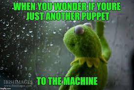 Depressed Frog Meme - depressed meme week imgflip
