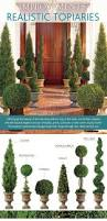 Mantel Topiaries - 25 unique topiaries ideas on pinterest topiary plants planters