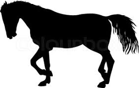 Black Mustang Horse Running Mustang Horse Stock Vector Colourbox