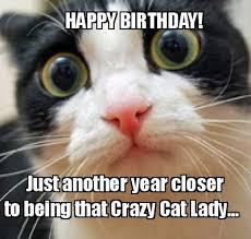 Happy Birthday Cat Memes - the best happy birthday memes happy birthday meme happy birthday