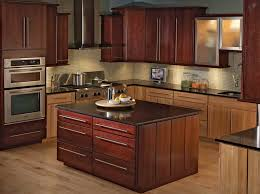 awesome cool kitchen cabinets taste
