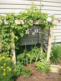 diy trellises idea box by barb c diy trellis trellis ideas and
