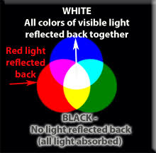 What Color Of Visible Light Has The Longest Wavelength Forms