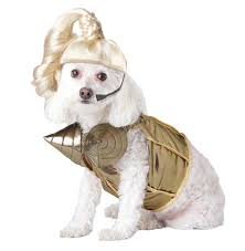 halloween costumes for dogs pets and humans time com