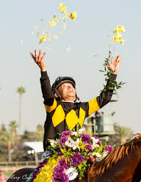 Win With Flower by 2016 Breeders U0027 Cup A Photo Essay By Mary Cage Past The