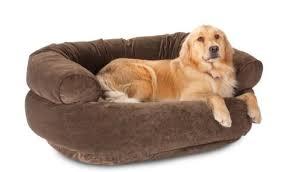 materasso per cani come aiutare un soffre di artrite tutto ze