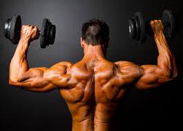 Great Shoulder - shoulder workout 3 great shoulder exercises fitness health