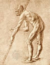 leonardo da vinci anatomical studies and drawings italian