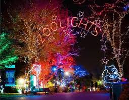 national zoo christmas lights get into the spirit with these holiday events dc on heels