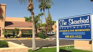 shorebird apartments for rent in mesa az forrent with
