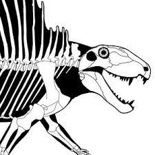 scott hartman u0027s skeletal drawing