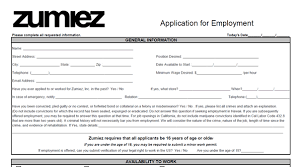 mcdonalds application for 16 year olds subway application