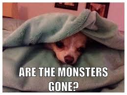Funny Chihuahua Memes - 20 adorable chihuahua meme sayingimages com