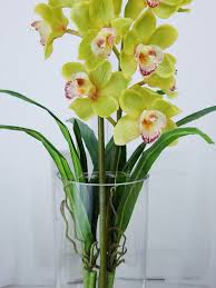 faux orchids green cymbidium orchids plant acrylic water faux silk real