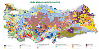 Soil Maps Distribution Of Soil Map Of Turkey Turkey Physical Political