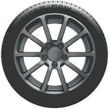 Pep Boys Gainesville Tiger Paw Tires
