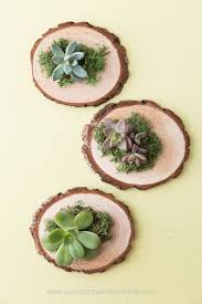 Easy Favors To Make by Cheap And Easy Diy Succulent Wedding Favors Succulents And