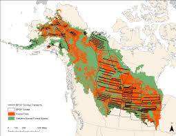 Alaska Population Map by Waterfowl Populations Resilient To Fires In The Western Boreal Forest