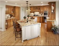 best kitchen remodels ideas 16 photos gallery of best kitchen remodels ideas