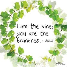 The Trellis And The Vine 58 Best I Am The Vine You Are The Branches Images On Pinterest