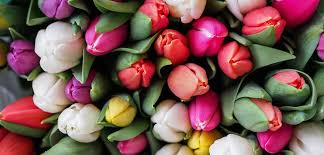 how 1 800 flowers com beat cart abandonment appboy