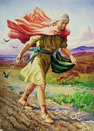 of soils and souls the parable of the sower religious studies