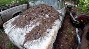 junkyard car youtube we found an abandoned junkyard filled with forgotten classic cars