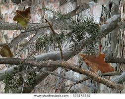 realistic forest camouflage seamless pattern conifer stock
