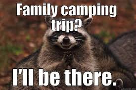 Raccoon Meme - how to keep raccoons away from your csite the road map