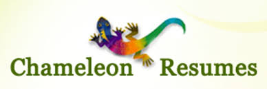 resume services boston chameleon resumes executive resume writer u0026 linkedin profile