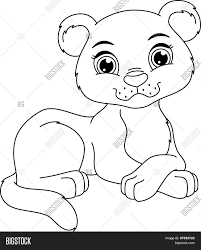 panther cub coloring page stock vector u0026 stock photos bigstock
