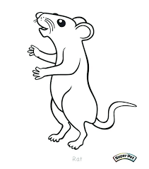 coloring page of a rat rat coloring page lab rats coloring pages rat coloring page ideas on