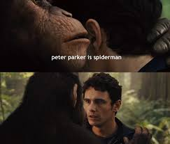 Peter Parker Meme Face - irti funny picture 1285 tags planetoftheapes peterparker