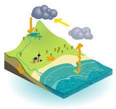 water and the water cycle for ks1 and ks2 children water and the