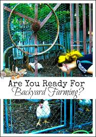 Backyard Homestead Book by Book Reviews Archives Homestead Lady