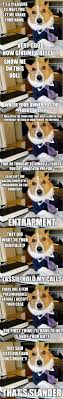 Dog Lawyer Meme - corgi lawyer meme lawyer best of the funny meme