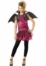 Pink Lady Halloween Costume Personalized Pink Lady Girls Womens Costume Exclusively