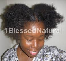 Chunky Flat Twist Hairstyles by Chunky Flat Twists And Twist Out