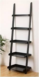 Leaning Ladder Bookshelves by Leaning Ladder Shelf Amazing Idead To Display Indoor Ladder Shelf