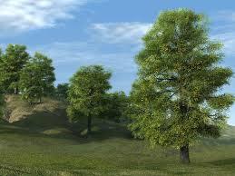 hd lime treev7 3 0 img jpg