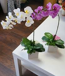 Fake Orchids Sweet Home Deco 18 U0027 U0027 Silk Artificial Phanaenopsis Orchid