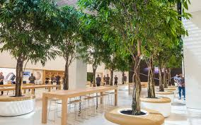 a sneak peek inside the new dubai apple store what s on dubai