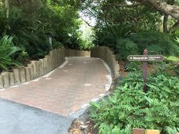 Backyard Monorail Disney U0027s Polynesian Village Resort Pathway To Ttc 2 Wdw Daily News