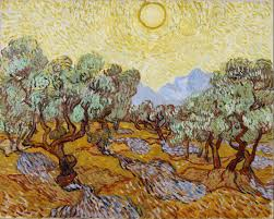 olive trees with yellow sky and sun u2013 vincent