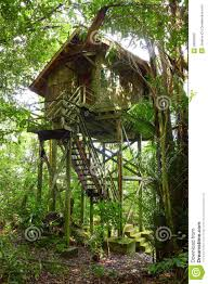 treehouse wooden eco tourism resort royalty free stock photo