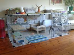 How To Build An Indoor Rabbit Hutch Best Setup For An Indoor Rabbit Rabbits United Forum My Pets